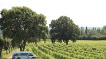Sussex Vineyard & Cheese-maker Bus Tour, Brighton, Wine Tasting & Winery Tours