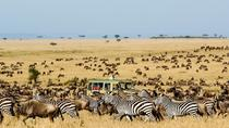 6 Days Migration Safari Ngorogoro Crater - Ndutu - Southern Serengeti, Arusha, Cultural Tours