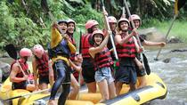 Awesome Ubud rafting and Swing with Sightseeing, Ubud, Private Sightseeing Tours