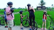 Cycling Experience Taro - Ubud, Ubud, City Tours