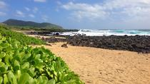 Your Circle Island Tours, Oahu, Private Sightseeing Tours