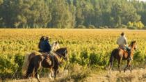 Enjoy the amazing Casablanca Valley, Horseback ride and Wineries Tour, Valparaíso, Horseback Riding