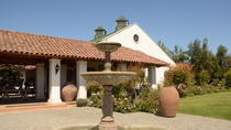 Full Day Casablanca Valley, 4 Traditional Wineries, 4 Wine Tastings, Valparaíso, Private ...