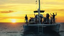 Sunset And city light tour on a forty foot catamaran, Snorkel tours daily, Oahu, Catamaran Cruises