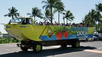 Hawaii Duck Tour: East Oahu Sightseeing, Oahu, Swim with Dolphins