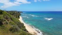 Oahu Duck Tour: Waikiki, Diamond Head and Sea, Oahu, Duck Tours