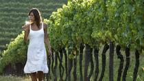 Half-Day Countryside wine tour near Vienna, Vienna, Wine Tasting & Winery Tours
