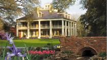 Houmas House Plantation Tour with Transportation, New Orleans, Walking Tours