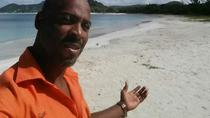 Private Full Day Tour, St John's, Private Sightseeing Tours