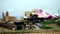 VITORIA AND RIOJA, WINE REGION WITH WINERY, Bilbao, Wine Tasting & Winery Tours