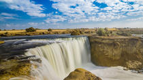 Day Tour to El Fayoum Oasis and Wadi al Rayan with Lunch, Cairo, Day Trips
