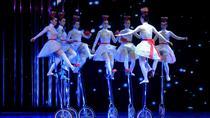 Beijing Evening Tour Of Acrobatics Show With Private Transfer, Beijing, Private Transfers