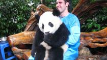 Private 2 Day Chengdu Tour: Panda Base And Giant Buddha, Chengdu, Private Sightseeing Tours