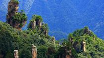 Zhangjiajie National Forest Park Day Tour Including Lunch, Zhangjiajie, Private Sightseeing Tours