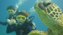 Scuba Diving Tours, Oahu, Scuba Diving