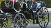 Charleston's Private Old South Carriage Evening Tour, Charleston, Private Sightseeing Tours