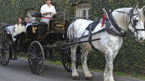 Charleston's Private Old South Carriage Tour, Charleston, Horse Carriage Rides