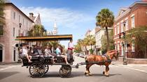 Tour Storico in Carrozza Old South di Charleston, Charleston, Percorsi in carrozza a cavallo