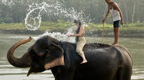 Refreshing 2N 3D Chitwan National Park activities, Kathmandu, Multi-day Tours