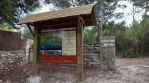 Bus Camí de Cavalls Route 12- Cala Galdana to Santo Tomás 11Km Trail in Menorca, Menorca, Hiking &...