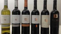 Legaris Full Range Tasting (6 wines) and Self Guided Winery Tour, Valladolid, Wine Tasting & Winery...