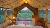 6 Days Safari to Lake Manyara, Ngorongoro Crater and Serengeti, Arusha, Cultural Tours