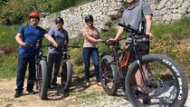 Amarone e-bike tour con pranzo, Verona, Bike & Mountain Bike Tours
