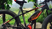 Amarone e- bike tour with lunch, Verona, Bike & Mountain Bike Tours