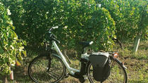 Full day Valpolicella bike tour with tasting, Verona, Bike & Mountain Bike Tours