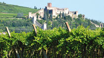 Wine tasting day trip in a Medieval Village - Soave, Verona, Day Trips