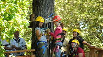 Ziplining Adventure in Sonoma, ナパとソノマ
