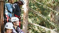 Ziplining Adventure in Sonoma, Napa & Sonoma, Kayaking & Canoeing