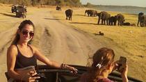 Wilpattu safari from negombo or pick up around airport, Negombo, Day Trips