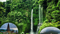 Private Tour Sekumpul Waterfall Combination Beratan Temple & Twin Lakes, Bali, Private Day Trips