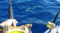 Big Game Fishing - Full day boat trip from Mahe, Victoria, Day Trips