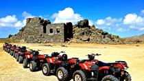 Aruba ATV Tour with Natural Pool Swim, Aruba