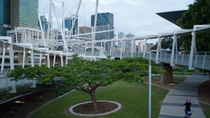 Excursion en bord de mer à Brisbane : visite privée de la ville, Brisbane