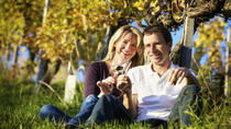 Chianti Classico Private Tour by Minivan from Montecatini with Lunch, Montecatini Terme, Half-day ...