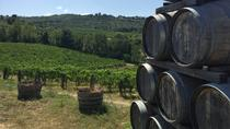 Chianti Classico Winery Tour, Lucca, Wine Tasting & Winery Tours