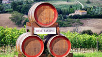 Chianti Classico with Lunch by Minivan from Pisa, Pisa, Half-day Tours