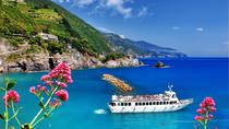 Cinque Terre Small-Group Tour by Minivan from Pisa, ピサ