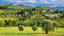 Vinci Chianti Wine and Aperitivo Small Group Tour by Minivan from Lucca