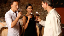 VIP Chianti Classico tour with Lunch by Minivan 8 people max from Pisa, Pisa, Bus & Minivan Tours