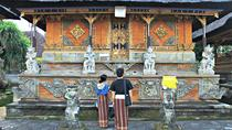 Balinese Art All Inclusive: Ubud Art Village, Balinese compound & Temple, Ubud, Cultural Tours