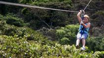 Apaneca Zipline Adventure with Optional Flowers Route Tour, San Salvador, Ziplines