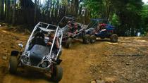 Laguna Verde Dune Buggy Adventure with Optional Flowers Route Tour, San Salvador