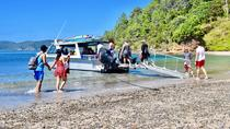 Afternoon Cruise & Island Tour - Scenic Cruise, Hike, Snorkel, Wildlife,, Bay of Islands, Day...