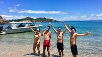 Bay of Islands Cruise & Island Tour - Snorkel, Hike, Swim, Paddleboard, Wildlife, Bay of Islands,...