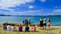 Private Charter - Bay of Islands Cruise & Island Tour, Auckland, Day Cruises