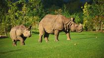 Skip-the-Line Ticket Zoo de la Fleche, Angers, Skip-the-Line Tours